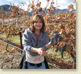 Pat in the vineyard